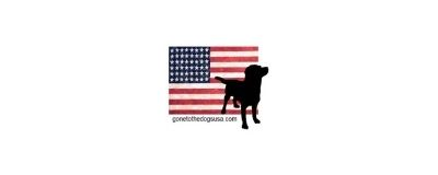 american flag with black dog